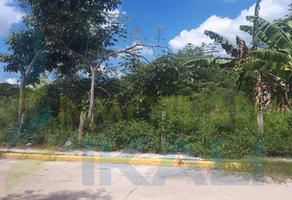 Foto de terreno habitacional en renta en  , jazmín, tuxpan, veracruz de ignacio de la llave, 5925829 No. 01