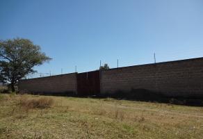 Foto de terreno habitacional en venta en jesús garcía , buenavista, ixtlahuacán de los membrillos, jalisco, 4231289 No. 01