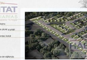 Foto de terreno habitacional en venta en  , jesús tlatempa, san pedro cholula, puebla, 0 No. 01