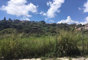 Foto de terreno habitacional en venta en jh preciado , san antón, cuernavaca, morelos, 13919091 No. 01
