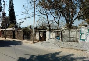 Foto de terreno comercial en venta en  , jiquilpan, cuernavaca, morelos, 0 No. 01
