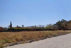 Foto de terreno habitacional en venta en jiutepec , centro jiutepec, jiutepec, morelos, 0 No. 01