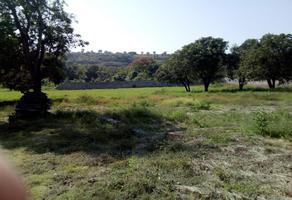 Foto de terreno industrial en venta en jojutla tlatenchi 1, tlatenchi, jojutla, morelos, 6339602 No. 01