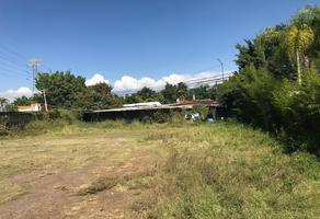 Foto de terreno comercial en venta en  , josé g parres, jiutepec, morelos, 0 No. 01