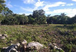 Foto de terreno comercial en venta en jose lopez portillo 1, villas del caribe, benito juárez, quintana roo, 0 No. 01