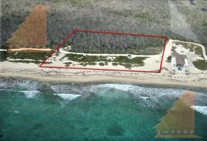 Foto de terreno habitacional en venta en  , josé maría morelos, josé maría morelos, quintana roo, 18891496 No. 01