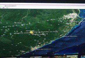 Foto de terreno habitacional en venta en  , josé maría morelos, josé maría morelos, quintana roo, 7585426 No. 01