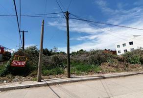 Foto de terreno habitacional en venta en jose vasconcelos sin numero, cedros, oaxaca de juárez, oaxaca, 0 No. 01