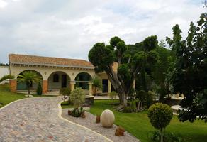 Foto de rancho en venta en josefa ortiz de dominguez 10, tlayacapan, tlayacapan, morelos, 16777093 No. 01