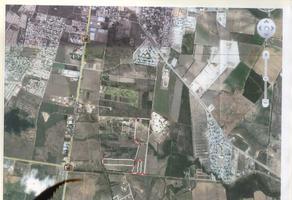 Foto de terreno habitacional en venta en josefa ortiz de dominguez , el alamito, cadereyta jiménez, nuevo león, 16791446 No. 01