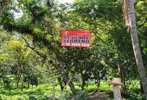 Foto de terreno habitacional en venta en josefa ortiz de dominguez , huiloapan de cuauhtémoc centro, huiloapan de cuauhtémoc, veracruz de ignacio de la llave, 10865219 No. 01