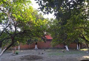 Foto de terreno comercial en venta en josefa ortíz de dominguez , itzamatitlán, yautepec, morelos, 18241373 No. 01