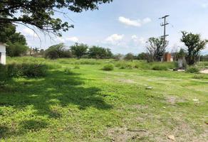 Foto de terreno habitacional en venta en  , josefa ortiz de domínguez, zacatepec, morelos, 0 No. 01