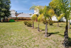 Foto de terreno habitacional en venta en juan calle bonilla 0, los dicios, san martín texmelucan, puebla, 19384902 No. 01