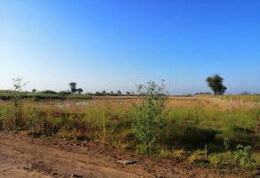 Foto de terreno comercial en venta en juan calle bonilla 1111, san mateo cuanala, juan c. bonilla, puebla, 16313289 No. 01