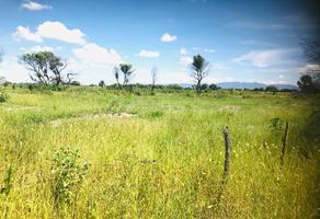 Foto de terreno habitacional en venta en juan de la barrera , juan de la barrera, durango, durango, 0 No. 01