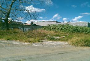 Foto de terreno habitacional en venta en juan de villerias , plan de ayala infonavit, morelia, michoacán de ocampo, 0 No. 01