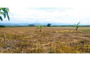 Foto de terreno habitacional en venta en  , juan diego, santa maría colotepec, oaxaca, 0 No. 01