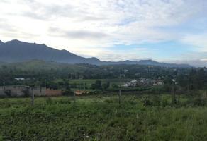 Foto de terreno habitacional en venta en juan escutia , san pablo etla, san pablo etla, oaxaca, 0 No. 01