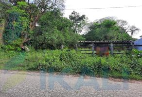 Foto de terreno habitacional en venta en  , juan lucas, tuxpan, veracruz de ignacio de la llave, 0 No. 01