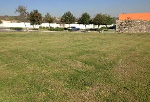Foto de terreno comercial en venta en juan paloamar y arias 252, la loma, zapopan, jalisco, 0 No. 01