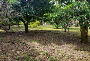 Foto de casa en venta en juárez , 3 de mayo, emiliano zapata, morelos, 13580539 No. 01