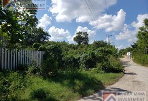 Foto de terreno habitacional en venta en  , juárez, benito juárez, quintana roo, 11228026 No. 01