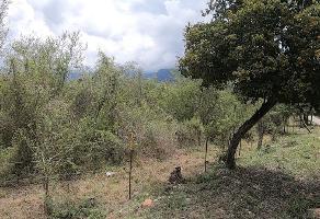 Foto de terreno habitacional en venta en juárez , el barrial, santiago, nuevo león, 14360557 No. 01