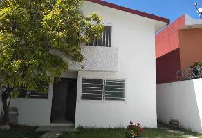 Foto de casa en renta en julio calva capetillo sin numero , universal, chilpancingo de los bravo, guerrero, 13341421 No. 01