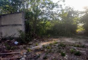 Foto de terreno habitacional en venta en jupiter , álamos i, benito juárez, quintana roo, 18695116 No. 01