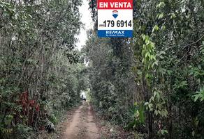 Foto de terreno habitacional en venta en jupiter , álamos i, benito juárez, quintana roo, 18734328 No. 01