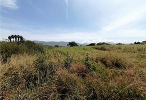 Foto de terreno habitacional en venta en  , juquilita, santa cruz xoxocotlán, oaxaca, 18076748 No. 01