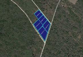 Foto de terreno comercial en venta en kanasin , kanasin, kanasín, yucatán, 0 No. 01