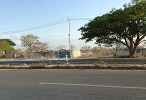 Foto de terreno habitacional en venta en  , kanasin, kanasín, yucatán, 13890309 No. 01