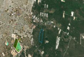 Foto de terreno habitacional en venta en  , kanasin, kanasín, yucatán, 19249457 No. 01