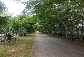Foto de terreno habitacional en venta en  , kankabchen, baca, yucatán, 0 No. 01