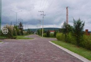 Foto de terreno habitacional en venta en carretera leon-cueramaro kilometro 13, santa rita, león, guanajuato, 2840429 No. 01