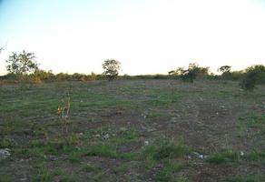 Foto de terreno habitacional en venta en kilometro 1.5 carretera ixil , chicxulub, chicxulub pueblo, yucatán, 0 No. 01