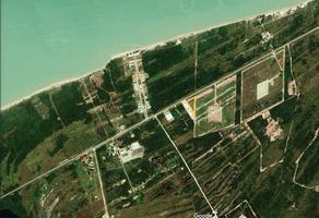 Foto de terreno habitacional en venta en kilometro 20 carretera carmen- puerto real , ciudad del carmen centro, carmen, campeche, 0 No. 01