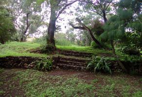 Foto de terreno comercial en venta en kilometro 22 , san andrés cholula, san andrés cholula, puebla, 17363802 No. 01