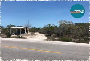 Foto de terreno habitacional en venta en kilometro 23 carretera chicxulub a chicxulub puerto si/n, chicxulub, chicxulub pueblo, yucatán, 0 No. 01