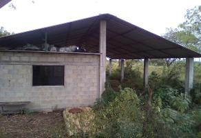 Foto de terreno habitacional en venta en kilometro 25 carretera ciudad valles; el mante tamaluipas , buenavista, ciudad valles, san luis potosí, 16289518 No. 01