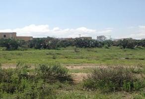 Foto de terreno comercial en venta en kilometro 3 , tezoncalli, axapusco, méxico, 6892378 No. 01