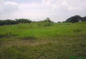 Foto de terreno habitacional en venta en kilometro 44+650 , benito juárez, toluca, méxico, 18384360 No. 01