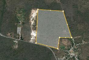 Foto de terreno industrial en venta en kilometro 5.2 , granjas, kanasín, yucatán, 8747782 No. 01