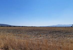 Foto de terreno habitacional en venta en kilometro 6.2, carretera a corral de piedras , corral de piedras de arriba, san miguel de allende, guanajuato, 12869317 No. 01