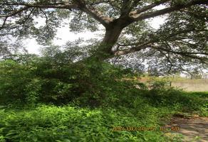 Foto de terreno comercial en renta en kilometro 7 del libramiento ejercito mexicano , el tecolote, colima, colima, 15179060 No. 01