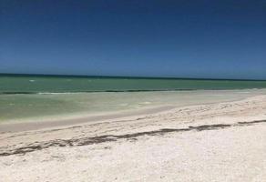 Foto de departamento en venta en kilometro , chicxulub, chicxulub pueblo, yucatán, 0 No. 01
