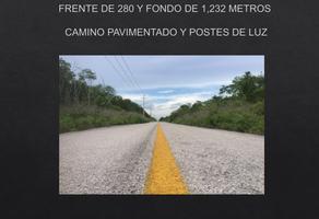 Foto de terreno habitacional en venta en  , k.m 308, benito juárez, quintana roo, 0 No. 01