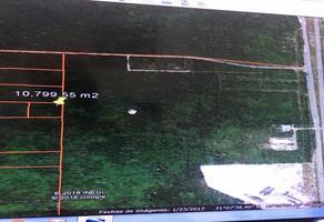 Foto de terreno comercial en venta en  , komchen, mérida, yucatán, 10906642 No. 01